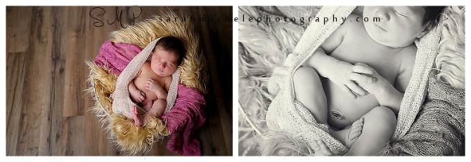 Annapolis Newborn Photographer | Newborn Portraits